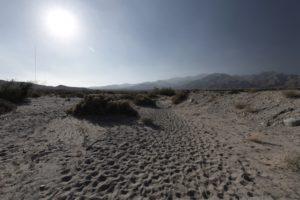 The desert floor