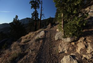 Still going down from the San Jacinto massif